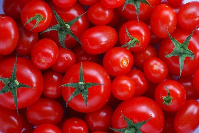 گرانی گوجه فرنگی