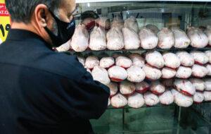 (یک وزارتخانه و یک خانواده گره کور افزایش قیمت مرغ