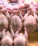 مرغ دوباره در مسیر افزایش قیمت