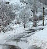 هواشناسی ایران ۹۹/۱۰/۱۵ / برف و کولاک در ۸ استان