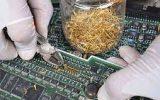 جذابیت قیمت طلا و استخراج طلا از کامپیوترهای قدیمی در ایران