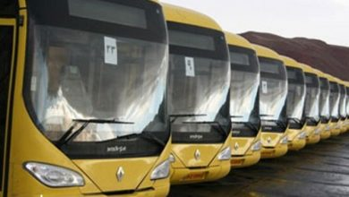 آماده باش ۲۵۰۰ دستگاه اتوبوس برای سفر بازگشت زائران اربعین