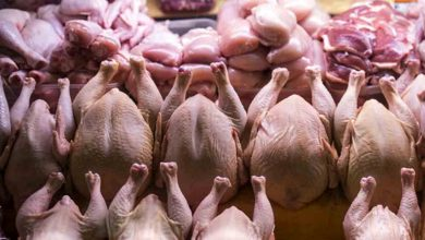 افزایش قیمت مرغ مصوب